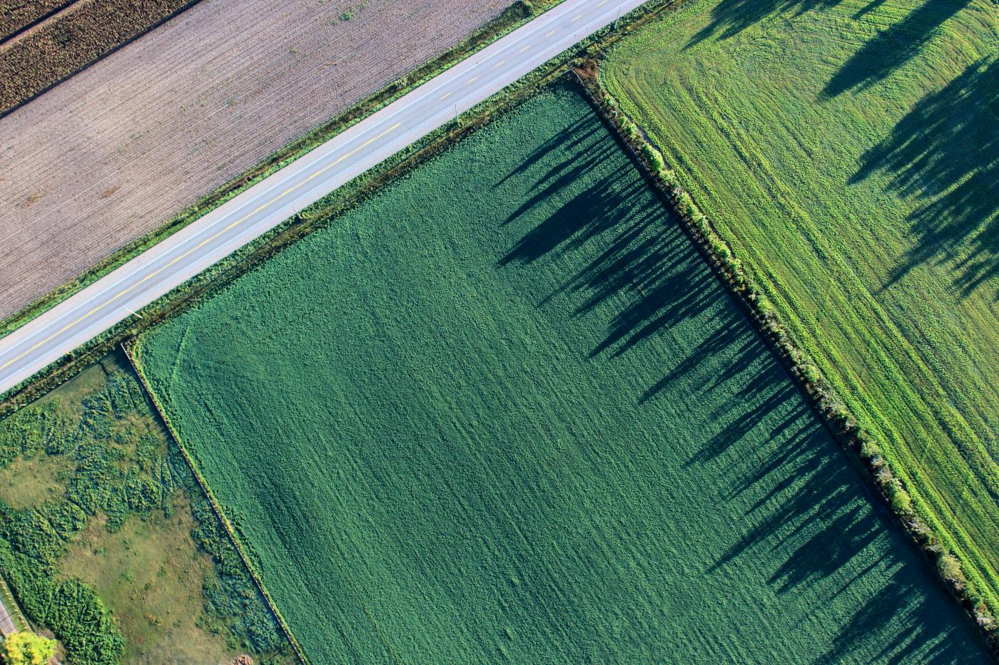 Agriculture Drone Solutions - Drone footage - consortiq