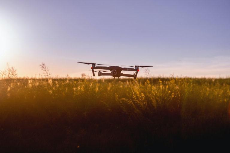 drones and locust invasions - drones for good - consortiq