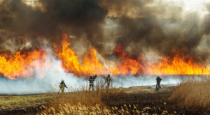 Forest Fires - Drones can protect from utility-related forest fires
