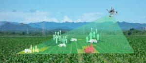 Drones & soil analysis
